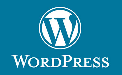 Limitaciones Diseño Web WaordPress